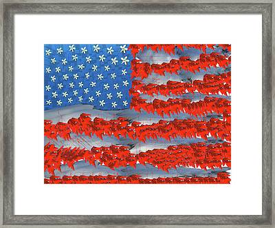 The Good Ole Red, White, And Blue Framed Print