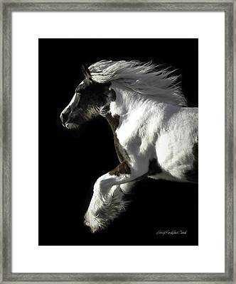 The Gorgeous Filly Framed Print by Terry Kirkland Cook