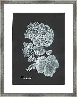 The Gossamer Geranium Framed Print by Carol Wisniewski