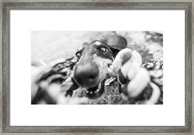The Grab Framed Print