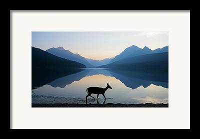 Sunrise Framed Prints