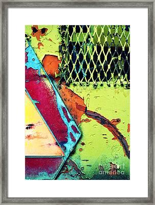 The Grate Framed Print by Tara Turner