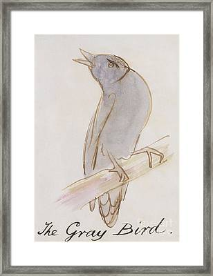The Gray Bird Framed Print by Edward Lear