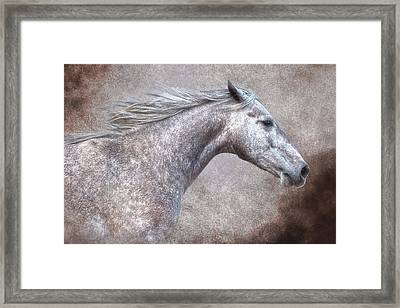 The Gray Framed Print by Ron  McGinnis