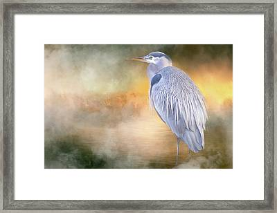 The Great Blue Heron Framed Print
