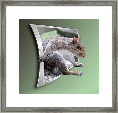 The Great Escape Framed Print by Brian Wallace