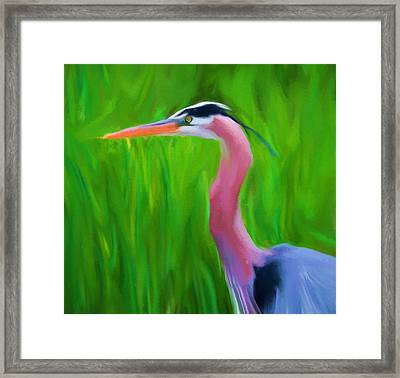 The Great Heron Framed Print by Dan Sproul