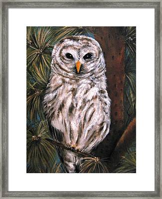 The Great Hunter Framed Print by Carol Sweetwood