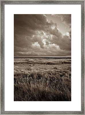 The Great Marsh Framed Print