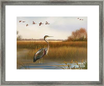 The Great Marsh-jp2859 Framed Print by Jean Plout