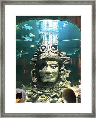 The Great Maya Reef At Audubon Aquarium, New Orleans  Framed Print