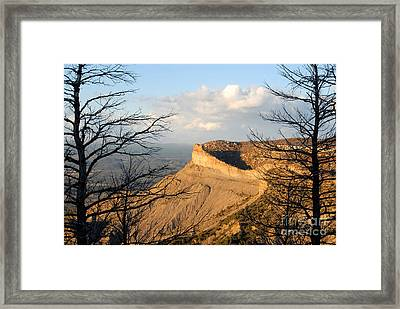 The Great Mesa Framed Print by David Lee Thompson