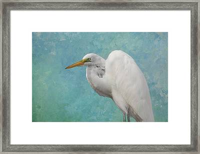 The Great White Framed Print by Kim Hojnacki