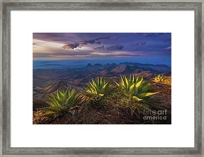 Great Wide Open Texas Framed Print