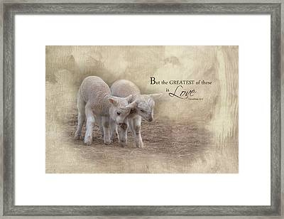 Framed Print featuring the photograph The Greatest Is Love by Robin-Lee Vieira
