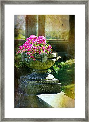 The Grecian Urn Framed Print by Diana Angstadt