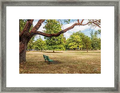 The Green Bench Framed Print