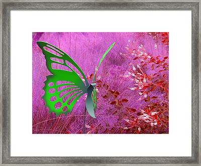 Framed Print featuring the photograph The Green Butterfly by Rosalie Scanlon
