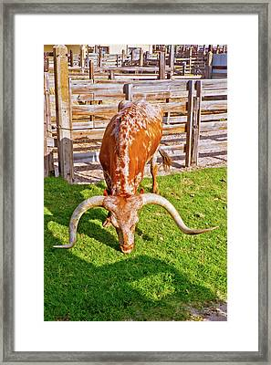 The Green Green Grass Of Home Framed Print by Linda Unger