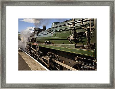 The Green Knight Framed Print