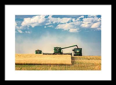 Harvest Framed Prints