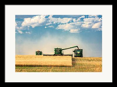 Harvest Landscape Framed Prints