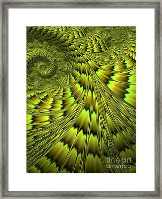 The Green Shell Framed Print by John Edwards