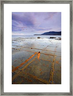 The Grid Framed Print by Mike  Dawson