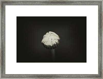 Framed Print featuring the photograph The Grieving Night by Shane Holsclaw