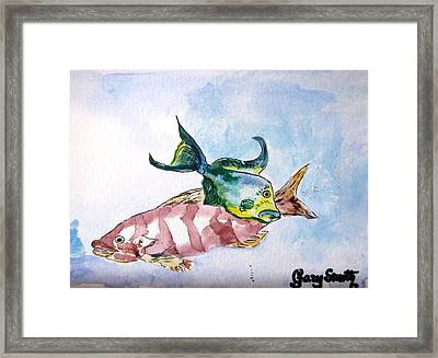 Framed Print featuring the painting The Grouper And Friend by Gary Smith