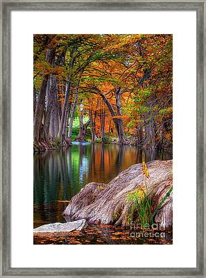 The Guadalupe Framed Print