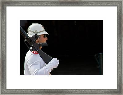 Framed Print featuring the photograph The Guard by Keith Armstrong