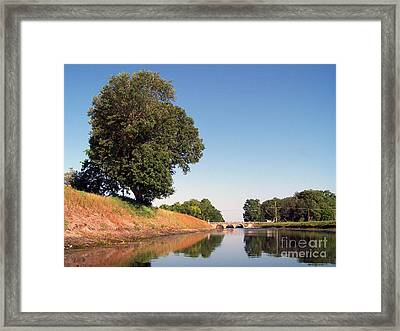 The Guardian Framed Print by Jack Norton