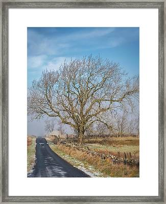 Framed Print featuring the photograph The Guardian by Jeremy Lavender Photography