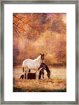 The Guardians Framed Print by Darren Fisher