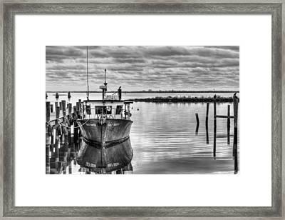 The Gulf Queen Bw Framed Print