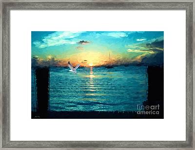 The Gull Framed Print