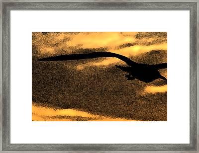 The Gull Framed Print by William Jones