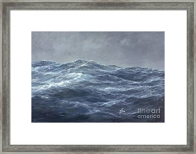 The Gull's Way Framed Print by Richard Willis