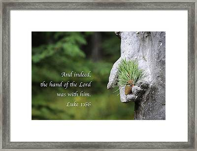 The Hand Of The Lord Framed Print by Mary Lee Dereske