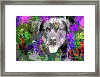 The Happy Rottweiler Framed Print