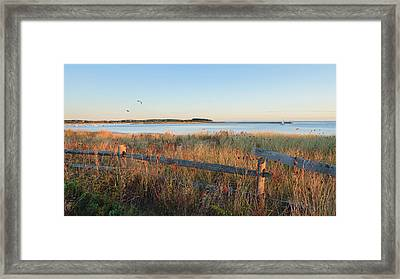 The Harbor Framed Print by Bill Wakeley