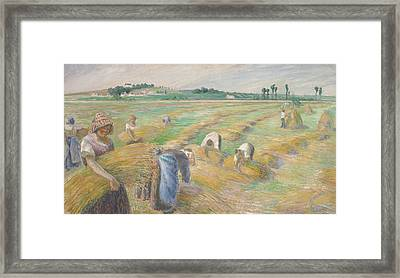 The Harvest Framed Print by Camille Pissarro