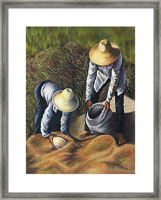 The Harvest Framed Print by Myra Goldick