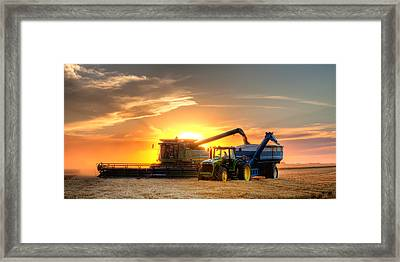 The Harvest Framed Print by Thomas Zimmerman