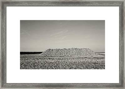 The Harvest Framed Print by Wim Lanclus