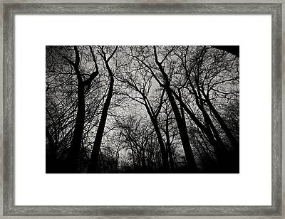 The Haunt Of Winter Framed Print