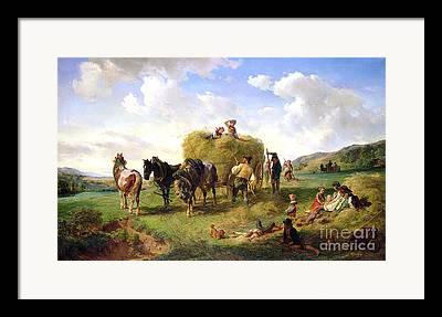 Hermann Framed Prints
