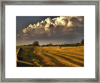 The Hayfield Framed Print by David Walsh