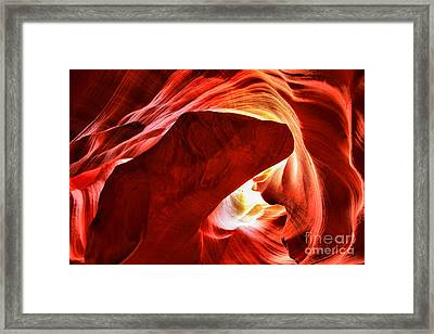 The Heart And The Dog Framed Print by Adam Jewell